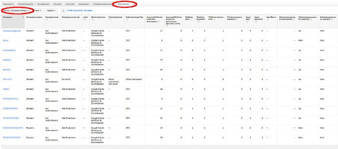 AdWords Kampagnendetails
